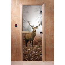 Дверь стеклянная с фотопечатью Арт. А084 1900х700